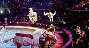 cirkuszi lovasok
