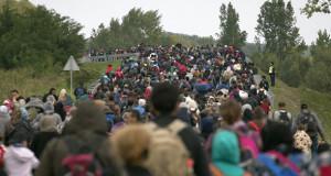 afgán menekültek Németország