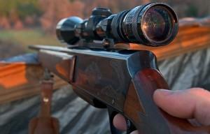 vadászat 1