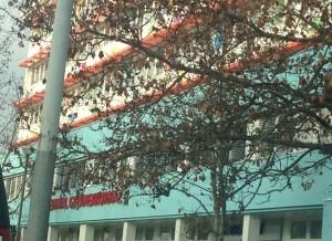 Heim Pál kórház