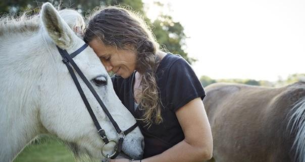 Dominancia felismerése a lovaknál - pontokba szedve