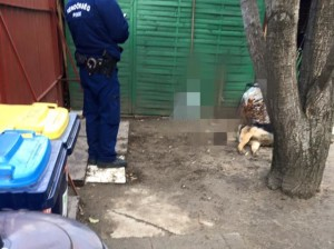 számszeríjjas kutyagyilkosság