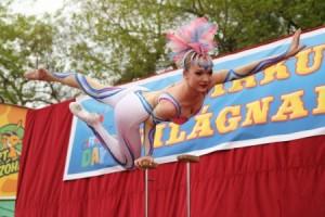 cirkusz világnap 2-fnc