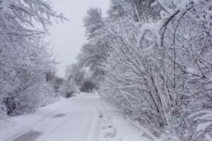 havaz