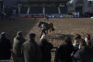 olasz lóverseny