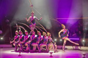 cirkusz fesztivál