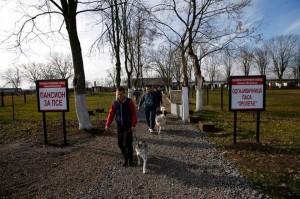 Serbia_Prison_Dogs_86019
